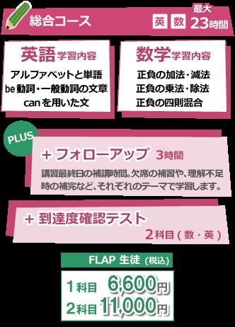 総合コース +フォローアップ